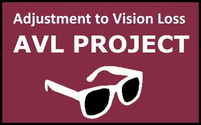 Adjustment to Vision Loss Project Update!